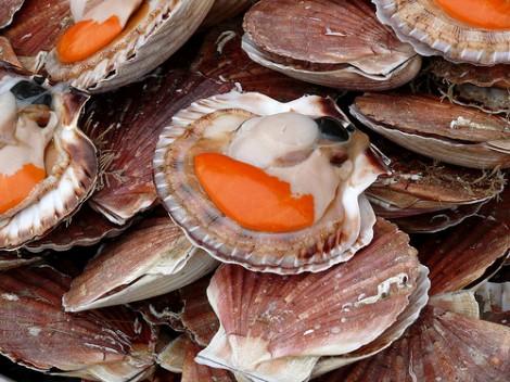 La fête de la coquille St Jacques à Villers-sur-Mer(Normandie)